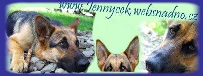 www.jennycek.websnadno.cz