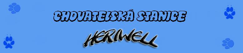 www.heriwell.wbs.cz